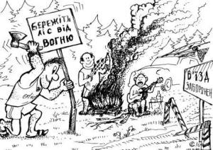 Від багаття до лісової пожежі - одна мить