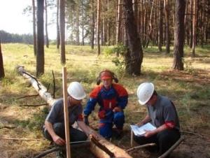 Кращі лісівники