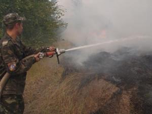 В Ізюмському районі сталась лісова пожежа