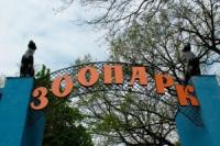8 марта женщины смогут бесплатно посетить Харьковский зоопарк