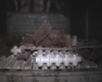 Заради випивки зловмисники залишили дитячий садок без опалення