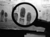 """Результати проведення міждержавної оперативно-профілактичної операції """"Розшук"""""""