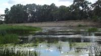 Самой грязной рекой в Украине признан Северский Донец