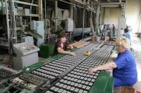 Суд признал банкротом единственную спичечную фабрику в Украине