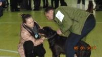В Ізюмі пройшла регіональна виставка собак