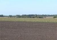 Нововведения от Минагрополитики. В Украине отменяется продажа сельхозземель