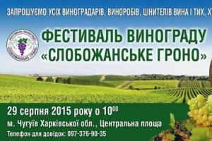 В Чугуеве пройдет фестиваль винограда