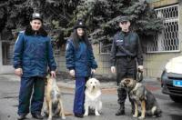 На службу до Ізюмської поліції підібрано трьох нових співробітників