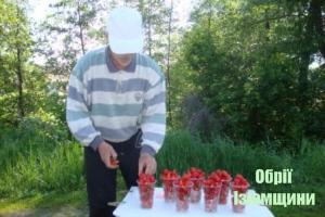 В Ізюмі почали продавати першу полуницю