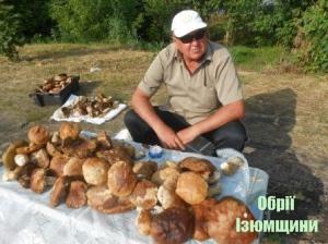 Після дощу в Ізюмі знову продають білі гриби
