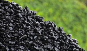 ПОХОДЖЕННЯ кам'яного вугілля