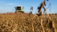 На Ізюмщині продовжується збирання пізніх сільгоспкультур, триває посів озимих
