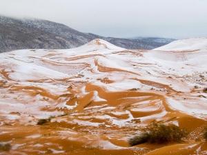 В пустыне Сахара впервые за 40 лет выпал снег