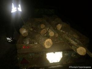 На Харківщині працівники поліції продовжують виявляти факти незаконної вирубки лісу