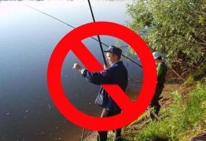 З 1 квітня вводиться заборона на вилов риби