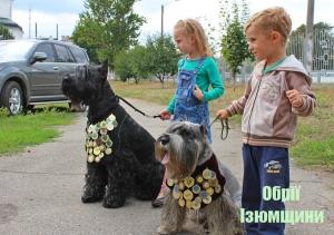 В Изюме провели выставку собак