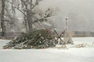 Новогодняя елка на набережной в Святогорске «прилегла отдохнуть»