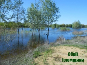 В Ізюмі утримується тенденція до зниження рівня річкової води