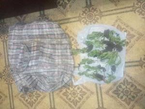 Інспектори Ізюмського відділку поліції викрили чоловіка причетного до крадіжки квітів
